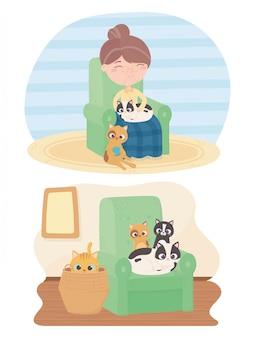 Gatos me fazem feliz, velha sentada com gato e gatinhos na cesta do sofá
