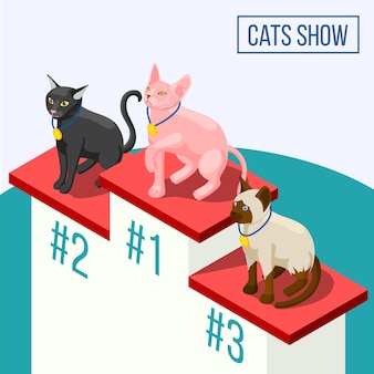 Gatos mostram composição isométrica