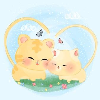 Gatos pequenos bonitos