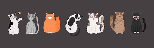 Gatos sentados. doodle pets com emoções diferentes.
