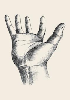 Gesto de mão