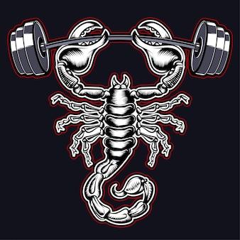 Ginásio escorpião