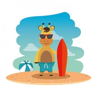 Girafa com óculos de sol de verão e prancha de surf na praia
