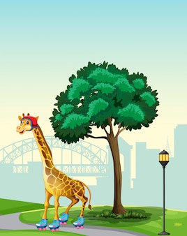 Girafa na cena do parque