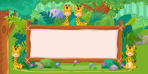 Girafas com um sinal em branco de madeira na selva