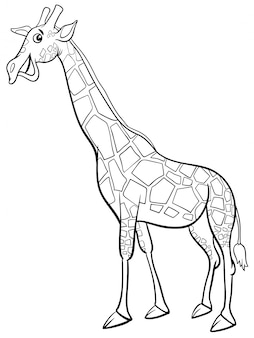 Giraffe animal character cartoon livro de colorir