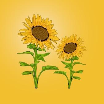 Girassóis de flor gêmea