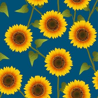 Girassol amarelo alaranjado no fundo azul índigo