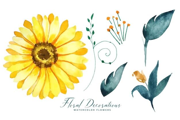 Girassol aquarela e elementos da coleção de folhas