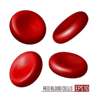 Glóbulos vermelhos. conjunto de eritrócitos em várias posições sobre um fundo branco. ilustração