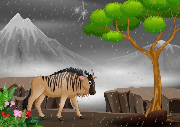 Gnu de desenho animado andando sob a chuva