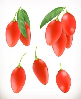 Goji berry. ilustração realista