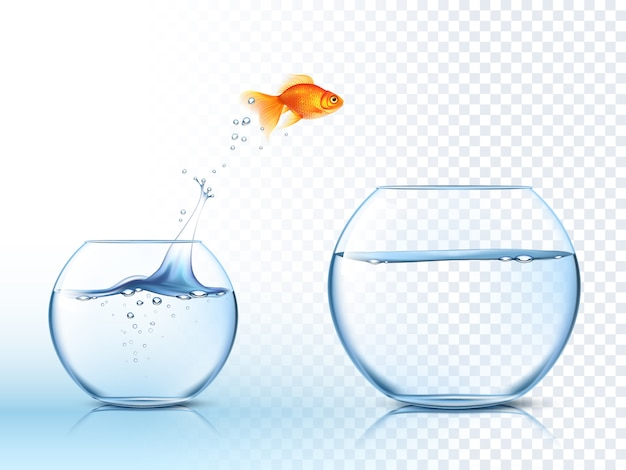 Goldish salta para fora da tigela de água
