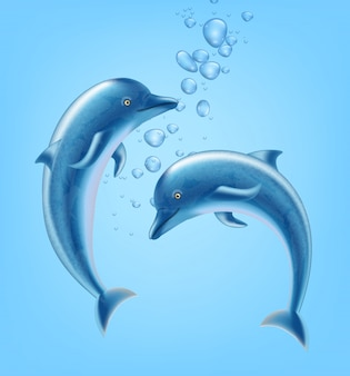 Golfinhos debaixo d'água