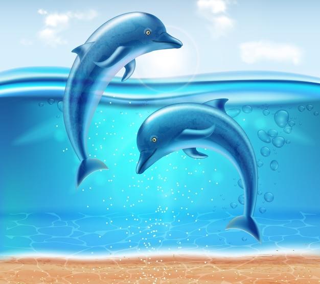 Golfinhos pulando