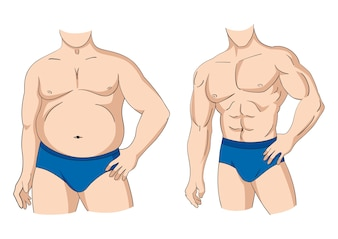 Gordura e ajuste
