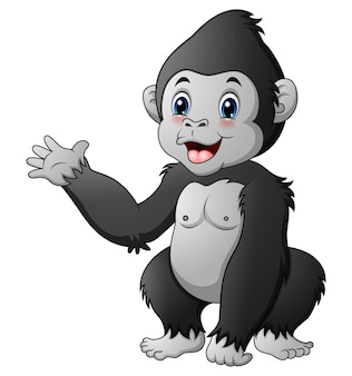 Gorila bebê fofo