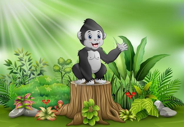 Gorila bonito do bebê que está no coto de árvore com plantas verdes