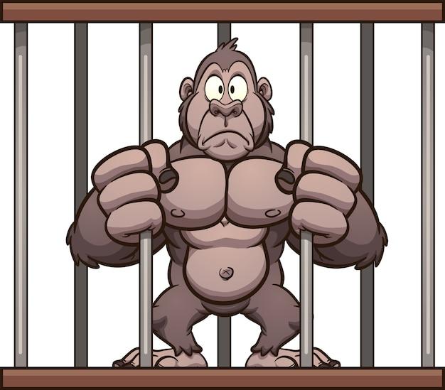 Gorila enjaulado