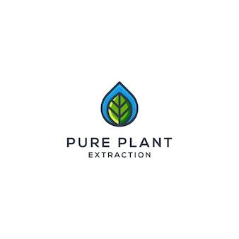 Gota de água e vetor de folhas, conceito de logotipo de óleo natural