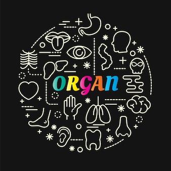 Gradiente colorido órgão com conjunto de ícones de linha
