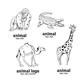 Gráficos de lápis desenhados à mão, animais africanos definir símbolos