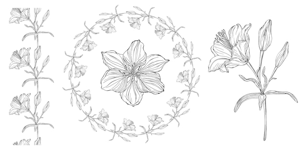 Gráficos vetoriais de uma composição floral