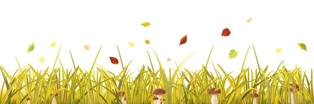 Grama amarela outono, cogumelos e folhas em fundo branco
