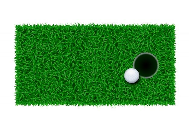 Grama de golfe verde