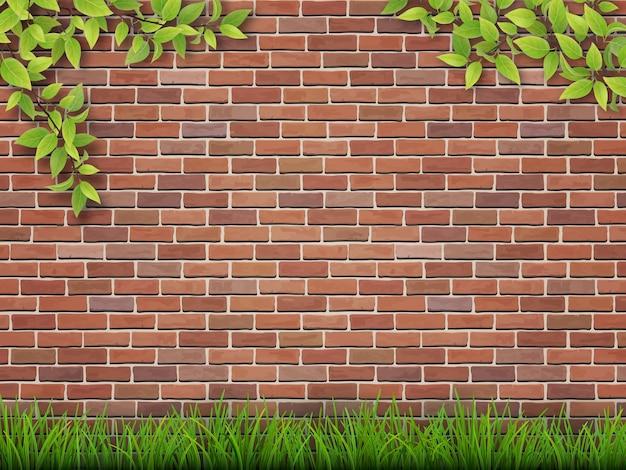 Grama e galhos de árvores no fundo da parede de tijolo vermelho.