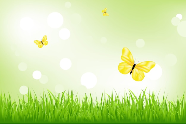 Grama verde e borboletas amarelas