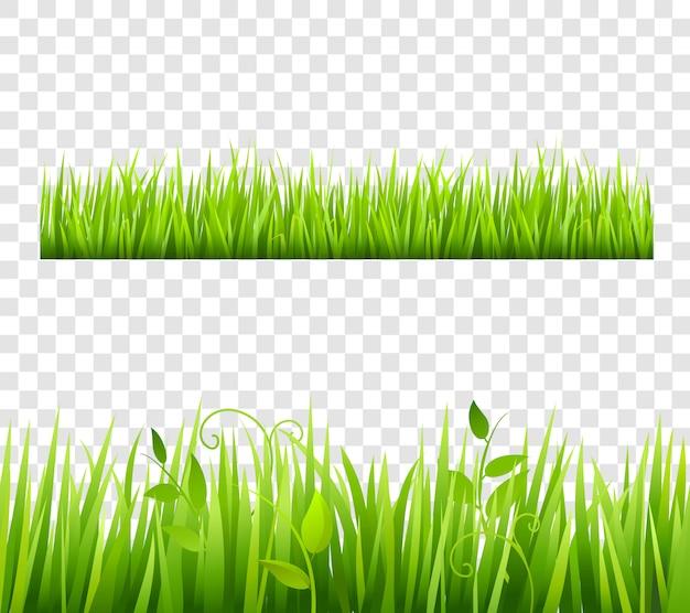 Grama verde e brilhante fronteira tileable transparente com plantas