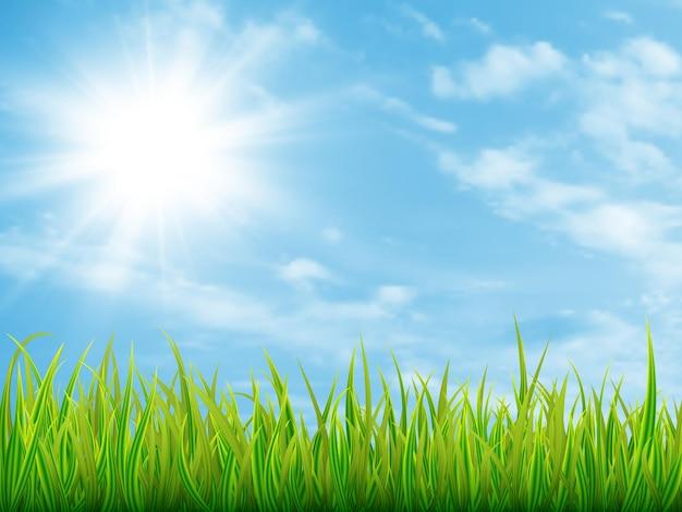 Grama verde e céu azul com nuvens