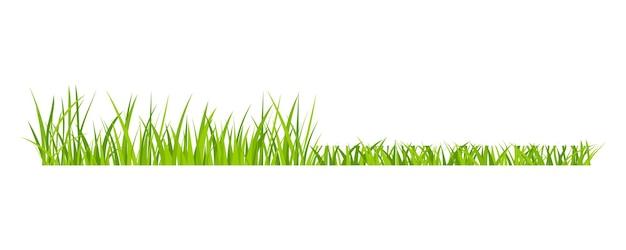 Grama verde gramado campo fronteira estilo plano design ilustração vetorial