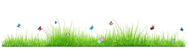 Grama verde isolada no fundo branco com flores e borboletas. ilustração vetorial