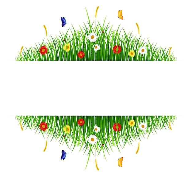 Grama verde primavera com flores e borboletas