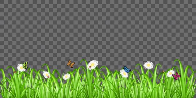 Grama verde real com joaninha flor e borboleta