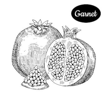 Granada mão desenhada.