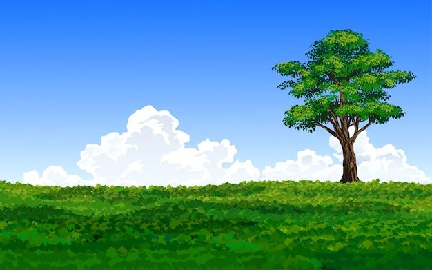 Grande árvore loney no campo verde