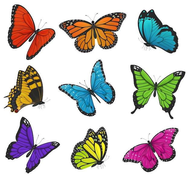 Grande coleção de borboletas coloridas. ilustração