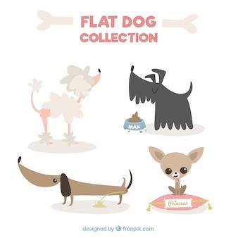 Grande coleção de cães no design plano