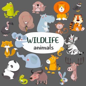Grande coleção de coleção de animais fofos da selva selvagem.