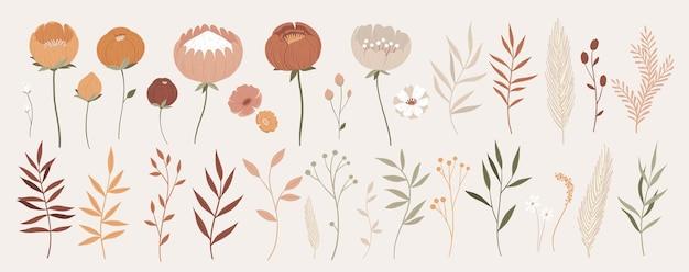 Grande coleção de elementos florais com contorno desenhado à mão