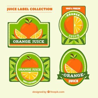 Grande coleção de etiquetas decorativas com laranjas