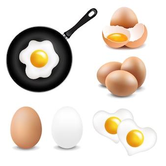 Grande coleção de ovos branco fundo
