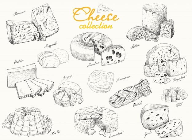 Grande coleção de vários queijos
