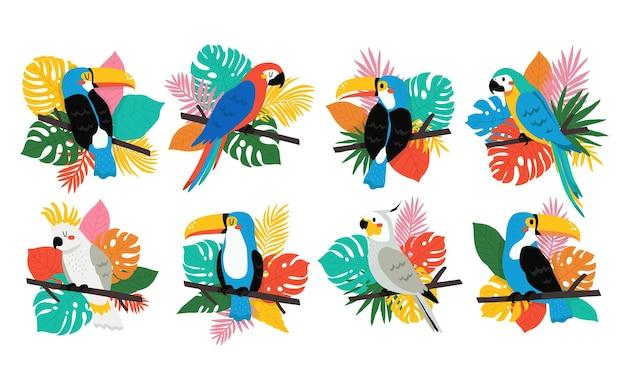 Grande conjunto com diferentes tucanos coloridos e papagaios com folhas tropicais em fundo branco. verão com pássaros tropicais