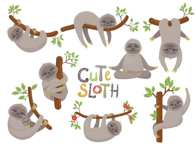 Grande conjunto de caráter de preguiças bonito em várias posições