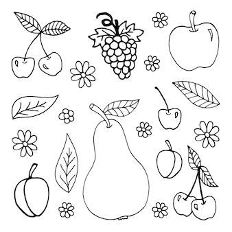 Grande conjunto de doodle de verão desenhado à mão com uvas, pêra, maçã, pêssego, ameixa, cereja, folhas e camomila. ilustrações vetoriais de viagens em fundo branco. frutas frescas para menu sazonal