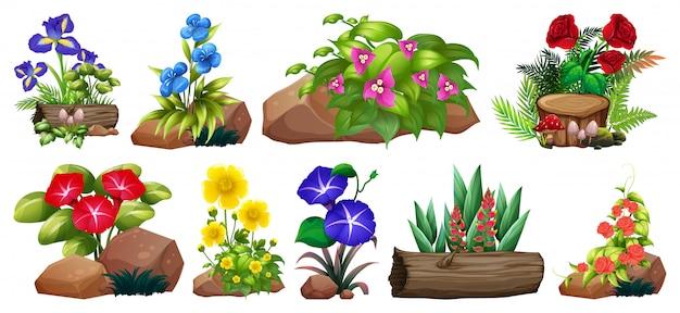 Grande conjunto de flores coloridas em pedras e madeira